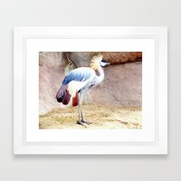 African Crowned Crane at Sunrise Framed Art Print