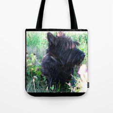 Miss Candy Tote Bag