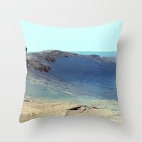Cosmos & Indians Throw Pillow
