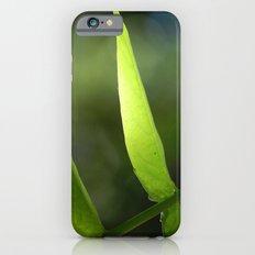 Light through the Leaves iPhone 6 Slim Case