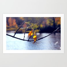 Last to fall Art Print