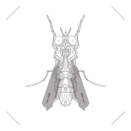 entomology 02. (i) Art Print