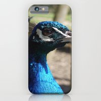 iPhone & iPod Case featuring Mr Peacock by Kitty Judge