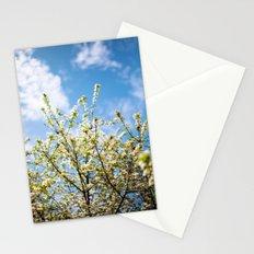 Meditations Stationery Cards