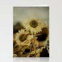 Sunny Field Stationery Cards