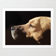 Van Dog Art Print