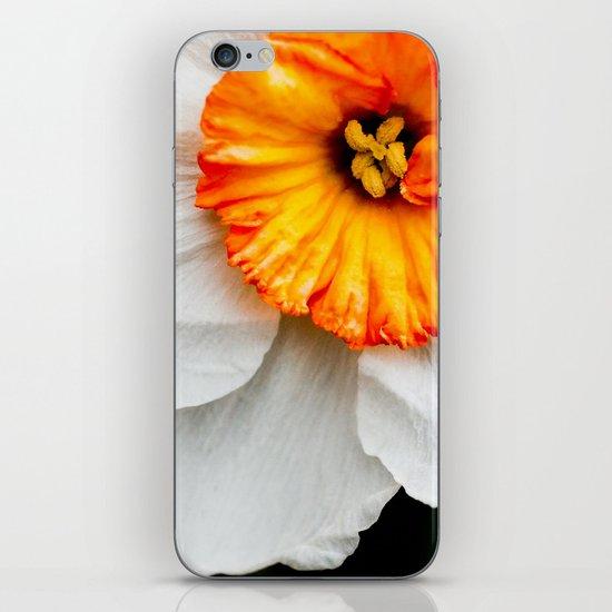 Wall Flower iPhone & iPod Skin