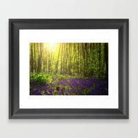 Summer Sun Framed Art Print