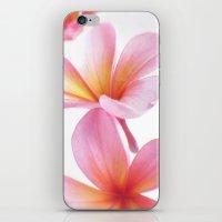 Pink Frangipani iPhone & iPod Skin