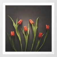 Orange Tulips Art Print