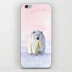 Polar bear in the icy dawn iPhone & iPod Skin