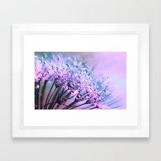 Violet Blue Dandelion Dew Flowers Framed Art Print