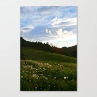 Morning Walk | Colorado Canvas Print