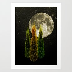 three trees Art Print