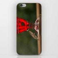 Hummingbird Legend iPhone & iPod Skin