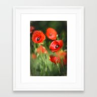 Warmth- Poppies In Love  Framed Art Print