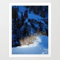 Bryce Canyon Chill Art Print