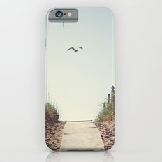 Gull Greetings  iPhone 6s Slim Case