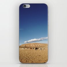 Dubois Grazers iPhone & iPod Skin