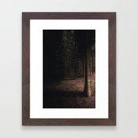 Pine Forest Framed Art Print