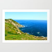 California Cove Art Print