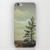 Lone Pine iPhone & iPod Skin
