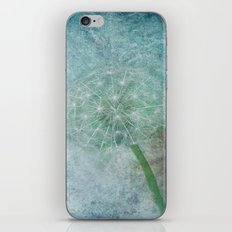 Delicate and Blue  iPhone & iPod Skin