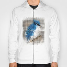 A Blue Jay Today Hoody