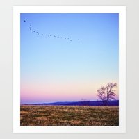 Single File Art Print