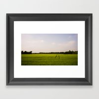 Corn 2 Framed Art Print