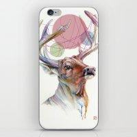 Buck II iPhone & iPod Skin
