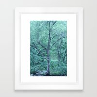 Fairy Tale Tree Framed Art Print
