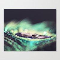Water Drops II Canvas Print