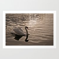 Drifting In Thought Art Print