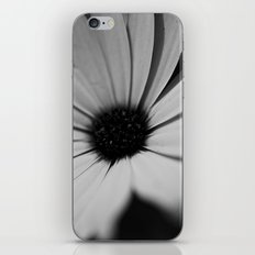 Black Daisy iPhone & iPod Skin