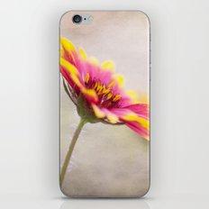 Live Bright iPhone & iPod Skin