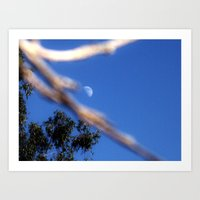 Moon On A Stick Art Print