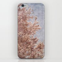 Beautiful Day - (pink cherry blossoms) iPhone & iPod Skin