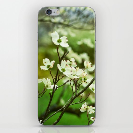 Surrounded by Possibility iPhone & iPod Skin