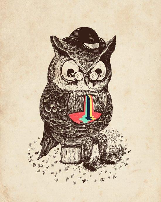 Strange Owl Canvas Print