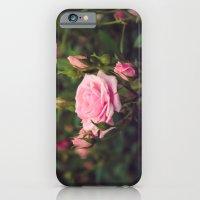 Sweet Summertime I iPhone 6 Slim Case