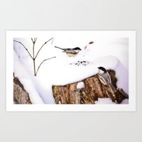 Chickadee Dinner Table Art Print
