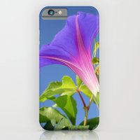Close Up Of Ipomoea with Leaf and Sky Background iPhone 6 Slim Case