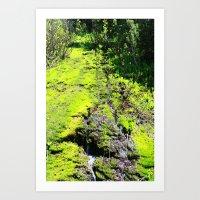 Green Stream Art Print