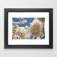 In Bloom 2 Framed Art Print