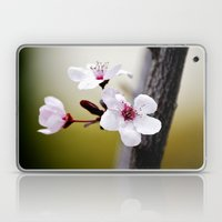 Signs Of Spring 3 Laptop & iPad Skin