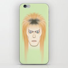 Changes 6 iPhone & iPod Skin