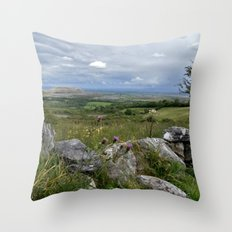 Slowly the Landscape Changes.... Throw Pillow