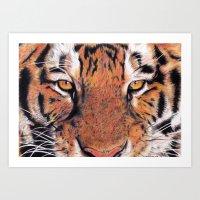 Tiger Close-up Art Print