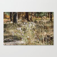 Fall Color with Flowers Canvas Print